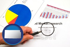 ks map icon and a market research study