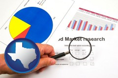 tx map icon and a market research study